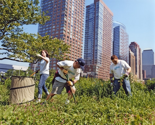 New York - The Battery Conservancy